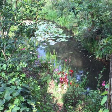In the Monet Garden