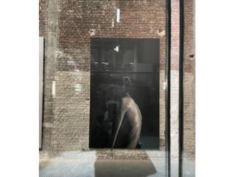 Paris: Anne Imhof invades the Palais de Tokyo with her immense talent